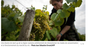 Mars 2016, La Vigne Numérique dans les échos